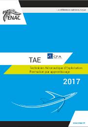 Notice détaillée TAE 2017